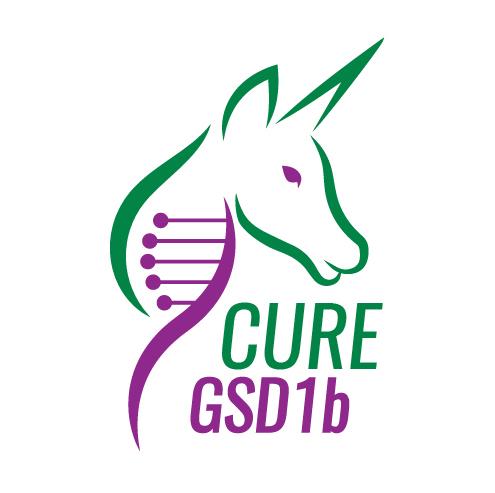 cure-gsd1b-sophies-hope